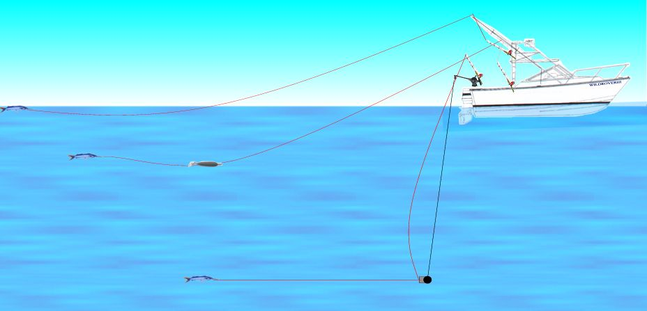 How To: Downriggers How To Setup and Use Downriggers - SaltwaterCentral.Com