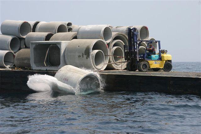 Long bay artificial reef association for Frying pan tower fishing