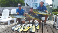 NC Standard Commercial Fishing License - SaltwaterCentral.Com