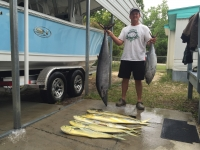 Statistics - Quit Fishing ~ Start Catching - SaltwaterCentral.Com