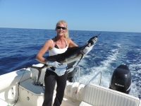 Offshore Rods and Reels Penn International and Star Paraflex - SaltwaterCentral.Com