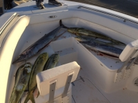 2012 185 Robalo Center console for sale - SaltwaterCentral.Com