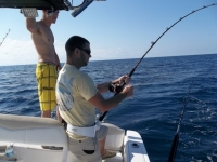 Basic Equipment: InShore - SaltwaterCentral.Com