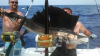 Spinning rods/reels UPDATED 2/1 - SaltwaterCentral.Com