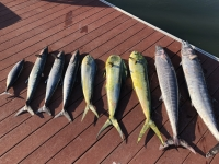 Cape Fear Anglers June meeting - SaltwaterCentral.Com