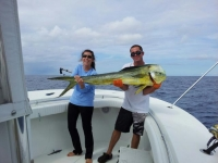 Saltwater Fishing Reports