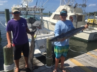 King Mackerel: The Basics I Love To Hear The Reels Scream - SaltwaterCentral.Com