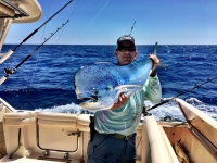 WTB King Mackerel Permit - SaltwaterCentral.Com